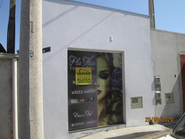 Rua Alípio Lopes das Neves, 233